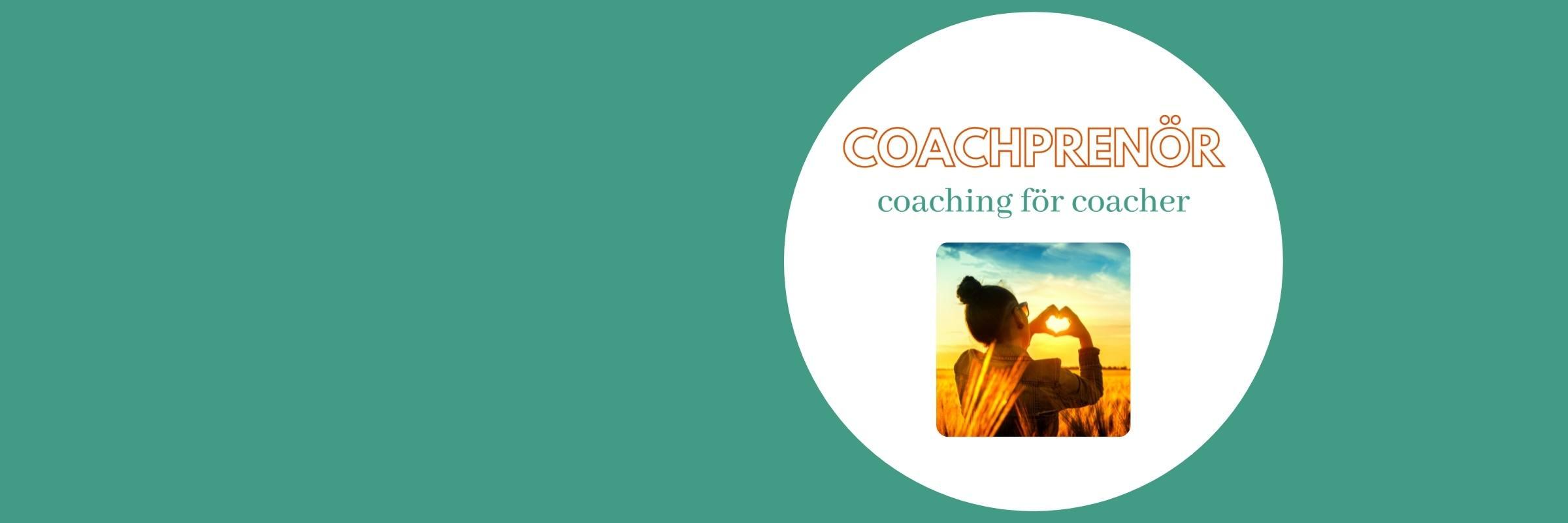 Coachprenör - coaching för coacher Kicki Westerberg