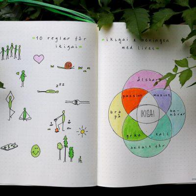 Bullet Journal  – IKIGAI & meningen med livet
