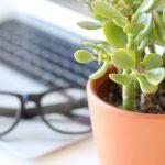 4 tips till en smartare redovisning - Kicki Westerberg - Ekonomisk PT