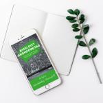 Bygg ditt drömföretag - Kicki Westerberg - Ekonomisk PT