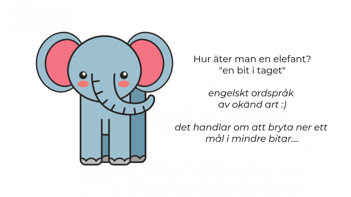 jobba fokuserat mot dina mål konsten att äta upp en elefant